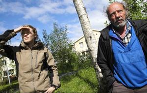 – Ettabild– På spaning efter hotade landskapsblommor.I Torvalla finns ett ovanligt bestånd brunkullor i anslutning till bebyggelse som Bengt Petterson på länsstyrelsen och praktikanten Sara Lindqvist besökte i går.
