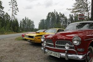Bilarna varierade i årsmodeller och radades snyggt upp utanför festområdet.