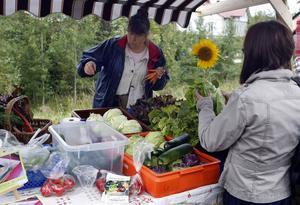 Annika Sahlin sålde grönsaker som har odlats i Söderala.