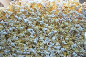 Popcorn har återinförts på Röda kvarn. Under skolbioveckan sitter barnen andäktigt och tittar på filmerna med sina popcorn-påsar, säger Carina Isaksson som startade skolbioveckan.