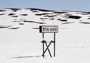Gruvbolaget Vilhelmina mineral sågar Bergsstatens beslut om malmbrytning på Stekenjokk och anser att regeringen måste prioritera dyrbara metaller före rennäringen i området.