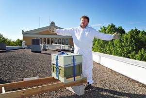 """FLYGTURER. Edward Warburton visar hur bina kommer att flyga runt i centrala Gävle. """"De flyger 1,5 kilometer åt vardera håll så de kan flyga till Brynäs och Söder och Öster...""""."""