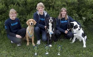 Malin Tangfelt, Joakim Tangfelt och Karin Spännare tog silver vid helgens lag-SM i agility.