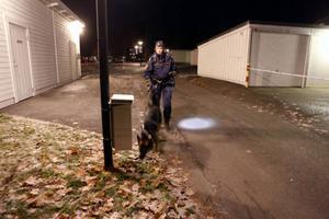 Hundar sökte av området i jakten på tillhygget som ska ha använts. Händelsen är rubricerad som grov misshandel.