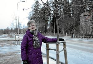 Vill vara delaktig. Kerstin Nyström tycker det känns roligt att kommunen hörsammat hennes medborgarförslag, bland annat att snygga till Stationsvägen. För några år sedan planterades en rad träd här som ska bli en framtida allé. Mer finna att föra och utvecklande förslag är på gång.