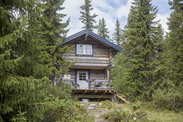 Bo på fäbod. På fäbodvallen finns två uthyrningstugor, en specialanpassad för familjer med barn.