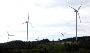 Sandvikens kommun har delägarskap i två olika vindkraftsbolag men om inte Samkraft får ordning på ekonomin hotar konkurs och Sandviken kan förlora 16,9 miljoner.