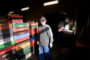 Företaget hanterar upp till 300 ton bär per säsong
