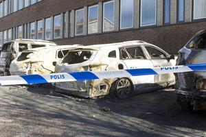 Den anhållne mannen i 20-årsåldern misstänks för att ha tänt eld på de fyra bilar som brann utanför kommunhuset i Tierp på onsdagsmorgonen.