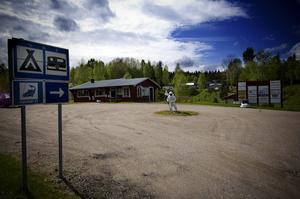 Campingproblem. Gäster på Ludvika camping känner sig illa behandlade av markägaren. Denne har arrenderat ut marken och Östansbo IS driver verksamheten, trots detta får både personal och gäster påpekanden från mannen.