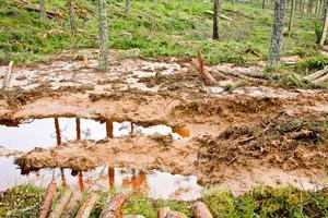 Djupa körskador nedför sluttningar orsakar ibland erosion så att stora mängder slam väller ut i omgivande mark, skriver Bert Andersson.