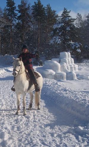 En härlig ridtur i skogen med snötunga granar och galopper på vida fält, det är en underbar känsla! Solen skiner och det kan inte bli bättre. Hästens frustande, kylan biter i kinderna och man känner sån glädje. Här stannat, för en kort paus.