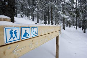 Vandringslederna i naturreservatet fungerar sommar som vinter om man har skidor eller snöskor.