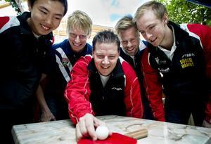 Jimmy Jin, Hampus Nordberg, Peter Blomquist, Jon Persson och Viktor Brodd är laddade inför en ny säsong i Pingisligan.
