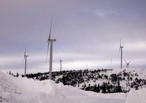 Många hävdar att vindkraftverken i fjällvärlden inte är gjorda för det hårda klimatet. – Visst har vi haft problem, säger Tony Eklöf som är chefstekniker för en del av landets vindkraftverk.