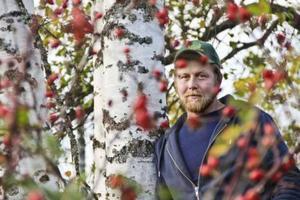 Ingen anledning att oroa sig för Erik Mossnelid, han står inte i nyponbusken. Det är fotografen som gör.