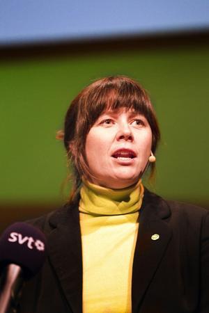 Dyrare flyga. Språkröret Åsa Romson menade när hon framträdde på Miljöpartiets kommundagar i Västerås att några hundra kronor i skatt på flygbiljetter vore bra för att förändra energianvändningen.
