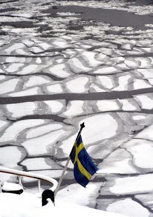 Töväder. Det finns hopp om en ny vår för svensk arbetsmarknad efter två bistra år. Men den ser annorlunda ut.arkivbild: Hasse Holmberg/SCANPIX