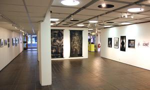 Över hundra foton visas i utställningen i Sandvikens konsthall.
