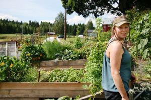 Framför trädgården där lökar, morötter, olika sorters kål, örter, sallad, bönor, nemesior, solrosor, lejongap och mycket annat trängs.