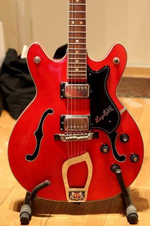 Inte samma gitarr som är borta, men samma modell och färg som gitarren på vift.