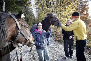 Distriktsveterinär Mirja Voudinmäki undersöker de hästar som varit inblandade i olyckan.