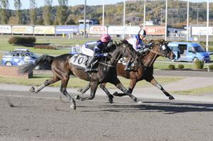Det måste till målfoto för att skilja tvåan Linda S Hedström och Global Derby, från vinnande Åsa Svensson och Sixten Palema. Foto: Sidmakarn