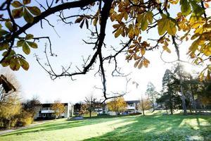Några av fastigheterna som IHF Bostad har köpt i Bomhus.
