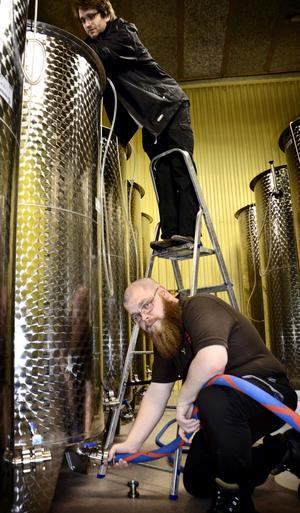 En lagervara. Efter bryggning lagras mjödet i sex månader i stora tankar. Johan Pihl och Joel Karlsson beräknar att producera 50 000–60 000 liter mjöd om året.
