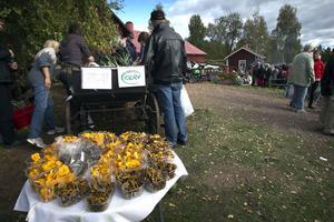 Höstens överflöd bjöds ut på marknaden.