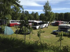 En del campare väljer varken husbil eller husvagn. Här är det norska föreningen för veteranhusbussar som har årsmöte i Bengtsfors.   Foto: Eva-Britt Andersson