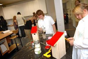 FULL AKTIVITET. Det råder full aktivitet på skaparverkstaden på Älvboda friskola. Syskonen Linus och Johanna Norgren målar fågelholkar som de ska sälja på skolans vårmarknad.