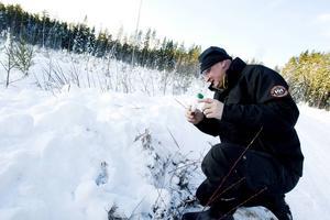 Det är mycket enklare att spåra en varg när det inte är barmark, menar Sone Persson, från länsstyrelsen. Bilden är en arkivbild från en annan vargspårning med Länsstyrelsen.