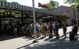 Skansen är Sveriges populäraste museum.
