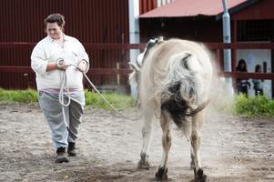 Norska fjordhästen Frida höll show i väntan på prisutdelningen, då hon rullade sig runt i sanden och ruskade av sig så dammet yrde.