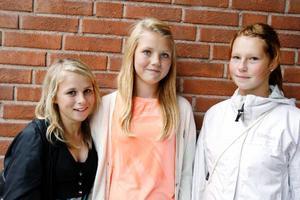 """Kompisarna Cecilia Gustafsson, Östersund, Johanna Bergqvist, Östersund, och Filippa Helmersson, Ås, har lite olika fredagsmys. """"Jag är med familjen först och äter lite godsaker, tittar på tv och sen sitter jag vid datorn"""", säger Cecilia. """"Jag är med kompisar, kollar på film och äter godis"""", säger Filippa. """"Jag tittar på """"Idol"""", film och dricker dricka"""", säger Johanna."""