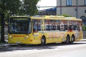 Profildesign heter företaget som stripat Djungelbussen.