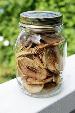 Gott, enkelt och nyttigt godis: torkade äppelskivor. Torka äppelskivorna i ugnen eller köp en särskild tork.