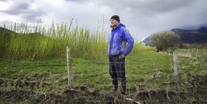 Steven Clarke, bonde i Keswick i norra England,  har planterat energiskog på sina marker.