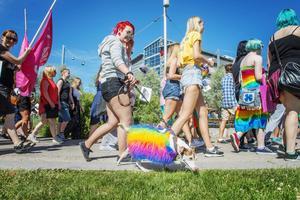 Regnbågshund i fjolårets Pride-parad.