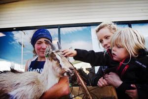 Geten Sossi, som, ägs av Sonja Ratzel, väckte stort intresse hos besökarna. Emilia Mikaelsson och hennes faster Mariana uppskattade att klappa geten.
