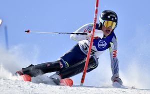 Filip Vennerström, Sundsvall, JSM-silver.