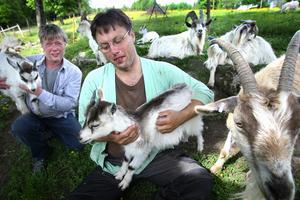 Kent Eriksson, till höger och Tommy Håkansson, här med killingarna Taikon och Yrhätta i knäet, har som hobby att bevara hotade djurarter. På gården i Hoberg finns bland annat jämtgetter, Svärdsjöfår och Gotlandskaniner. Vissa arter finns det inte ens 100 exemplar kvar av i landet. Foto:Gunne Ramberg