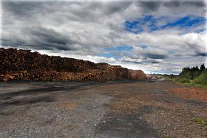 Stormlagret på Hissmofors sågverk bevattnas för att timret inte ska skadas.