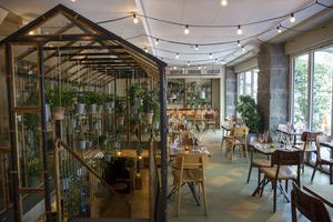 Väkst – Köpenhamns mest klorofyllstinna restaurang.