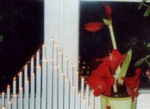 """Birgit Einebrant i Bergsviken, Svenstavik, har en dubbelblommande amaryllis. """"Jag har aldrig sett sådant förut, den här blommade normalt förra vintern,"""" berättar hon"""