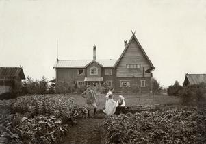 Så här såg trädgården ut 1898.