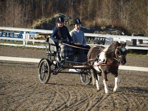 Örnsköldsviksortens Ryttarklubbs Klara Hagberg, 9, med Boa Constrictor segrade i DM för juniorer. I vagnen fanns även Klaras mamma Misan Högmark.