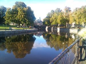 Vandrade förbi Svartån i det vackara soliga höstvädret. Såg träden spegla sig i det blanka vattnet, tänkte att hösten är bra fin.