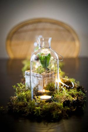 Marléne pyntar helst med naturmaterial och mossa, några hyacinter och en ljusslinga blir ett spännande blickfång på vardagsrumsbordet.